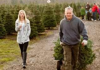 U Cut Christmas Trees